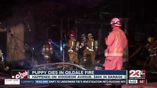 Family displaced after home in Oildale is destroyed in overnight fire