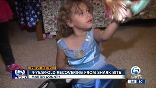Violet Jalil: 4-year-old bitten by shark at Bathtub Beach recovering at home - Video