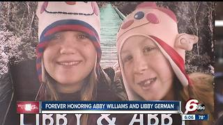 Delphi Murders: Plans unveiled for Libby & Abby memorial park and softball field - Video