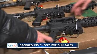 PolitiFact Wisconsin: Background checks for gun sales - Video