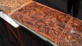 World's Longest Apple Tart - Video