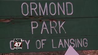Ormond Park litigation stalls answers to questions about the project - Video