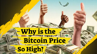 Why Is The Bitcoin Price So High?