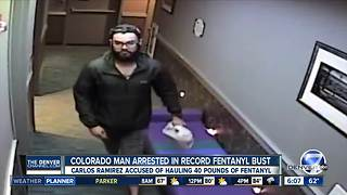 Colorado man arrested in NY fentanyl bust - Video