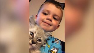 Kitten Is BEST FRIENDS with Adorable Kid