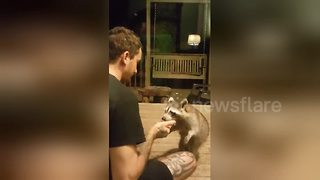 North Carolina man befriends a racoon and feeds him doughnuts