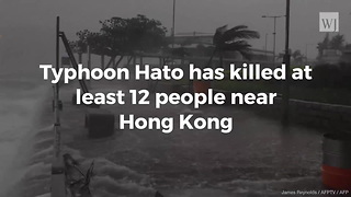 Typhoon Hato Hits China Killing At Least 12 - Video