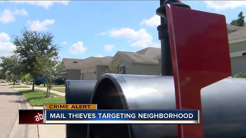 Neighbors report thieves stealing mail from boxes in Wesley Chapel neighborhood