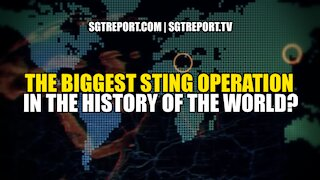 THE BIGGEST STING OPERATION IN THE HISTORY OF THE WORLD?