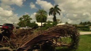 Dealing with yard debris before, after storm - Video