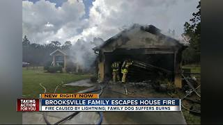 Lightning strike sets Hernando County garage and kitchen ablaze, family dog injured - Video