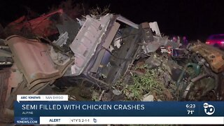 Truck carrying frozen chickens crashes in Alpine