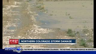 Northern Colorado storm damage - Video