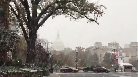 Blanket of white coats DC in first snowfall of season