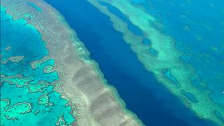 The largest living thing on earth, The Great Barrier Reef. - Video