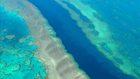 The largest living thing on earth, The Great Barrier Reef.