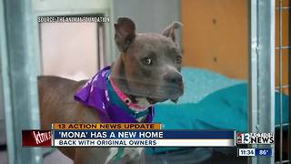 Mona has a new home with original owners - Video