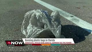 This city could be the 1st in Florida to ban plastic bags - Video