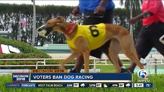 Voters ban dog racing in Florida