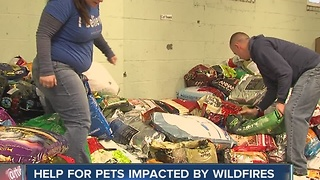 IndyHumane helping pets impacted by wildfires in Tennessee - Video