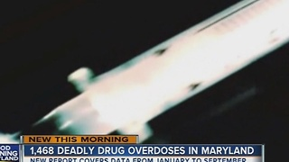 Drug overdoses on the rise in Maryland - Video