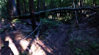 Thrilling downhill mountain bike ride ends in inevitable crash