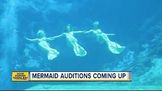 Weeki Wachee is looking for new mermaids - Video