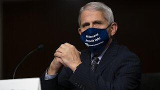 "Fauci: Lockdown Not Needed Unless Pandemic Gets ""Really, Really Bad"""