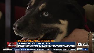Veteran says he and his service dog were banned from College of Southern Nevada - Video