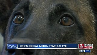 K9 Tye: OPD's social media star
