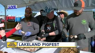 Positively Tampa Bay: Pigfest 2 - Video