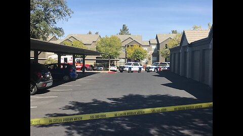 Henderson mother stabs her young son, dies after confrontation with officers