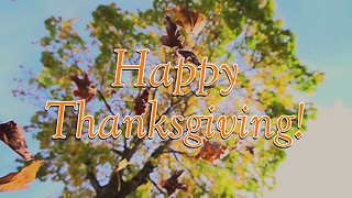 Happy Thanksgiving Greeting Card 4 - Video