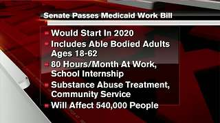 Michigan Medicaid work requirement bill sent to Gov. Snyder - Video
