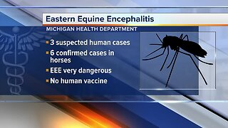 3 possible human cases of deadly mosquito virus detected in Michigan