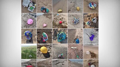 Photos of balloon debris submitted with survey