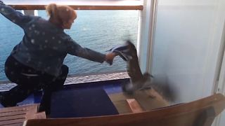 Seagull Gets Stuck On Cruise Boat - Video