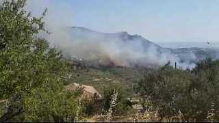 Wildfire Threatens Homes, Injures Firefighter in Southern Croatia - Video