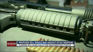 Two Florida Lawmakers Calling For New Gun Control Laws - Video