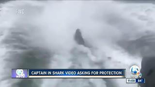 Captain in shark video asking for protection - Video