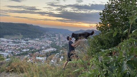Australian Shepherd jumps into owners armes during sunset