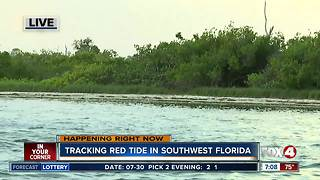 Tracking red tide in Southwest Florida by boat - 8am live report - Video