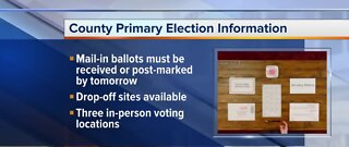 County primary election information