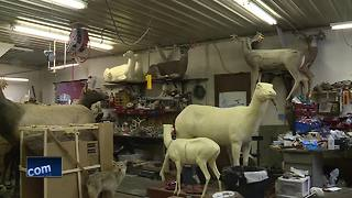 Great Outdoors: Robotic taxidermy decoys help catch poachers - Video