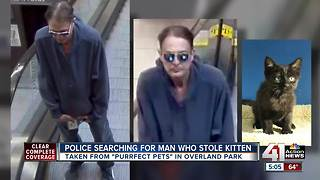 Overland Park police looking for alleged 'Catnapper' - Video