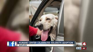 Humane Center Celebrates 100,00th Adoption - Video
