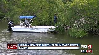 Human remains found along Gordon River in Naples - Video