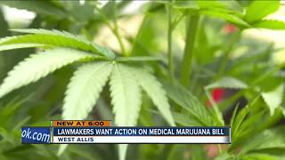 State lawmakers call for action on medical marijuana proposal