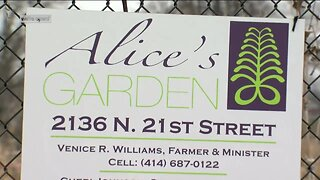 Alice's Garden: Farmers Market helping small businesses continue sales