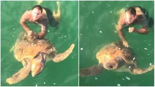 Giant turtle rescued after being stuck on a fishing hook